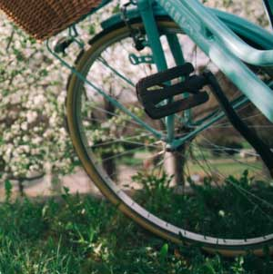 Tou·te·s à vélo ! | Administrateur, superviseur général