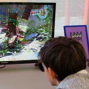 Mettre en place une offre de jeux vidéo en bibliothèque | Administrateur, superviseur général